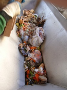 Kollvik-Recycling